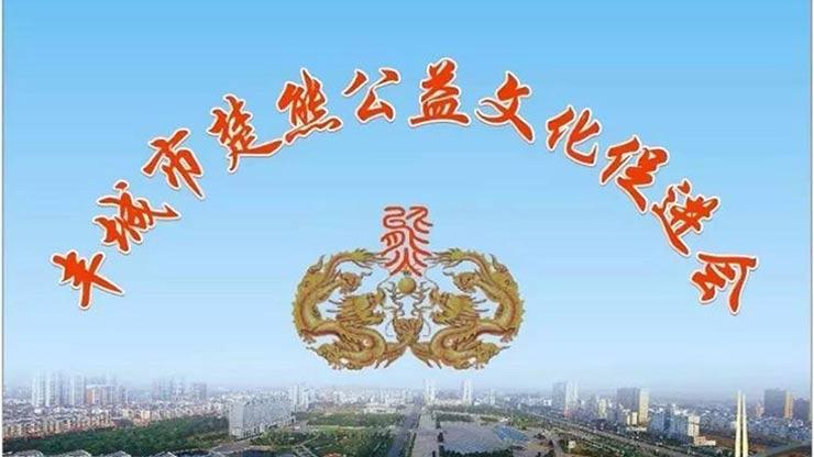 丰城市楚熊公益文化促进会