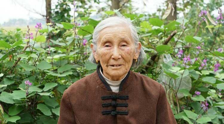 七律 喜庆姨妈八十六岁华诞