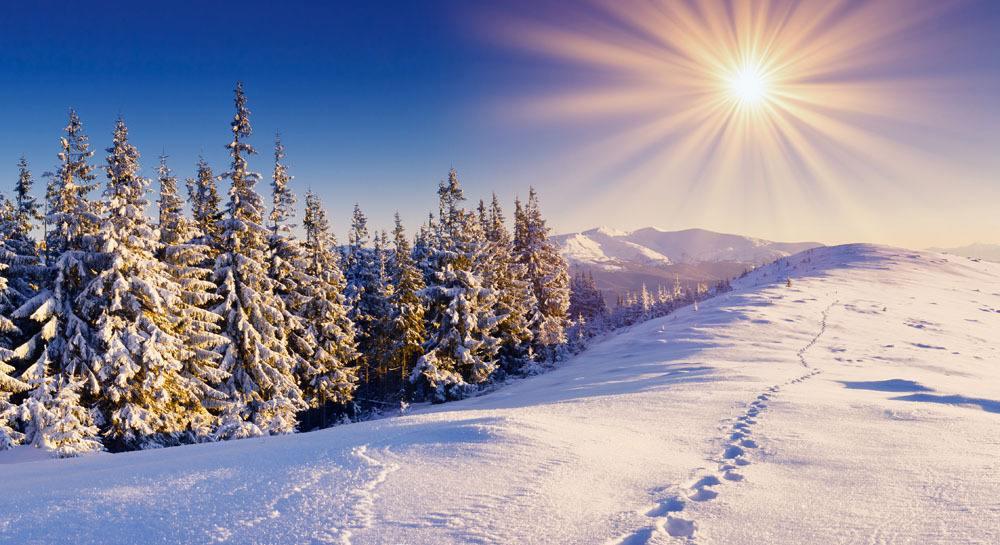 七律•丁酉冬雪